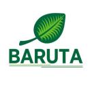 Logo Baruta