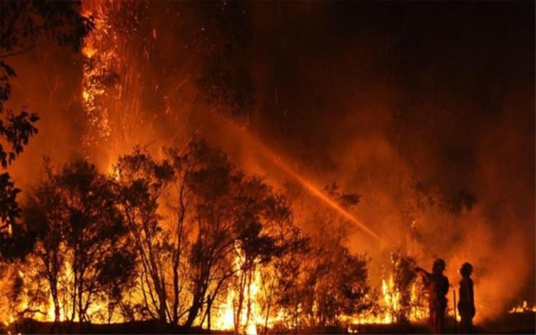incendios-australia-1573525105848