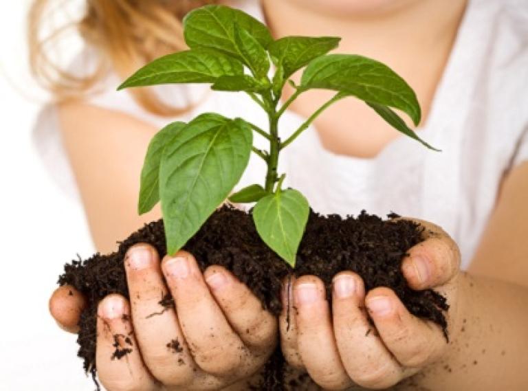 desarrollo-sostenible-2