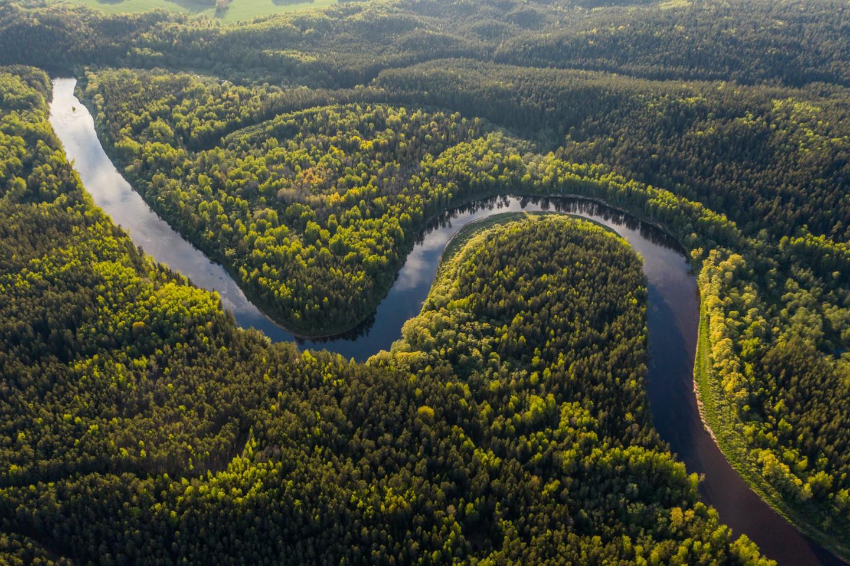 Gestión de cuencas hidrográficas y ODS 6 en Venezuela - Vitalis Blog